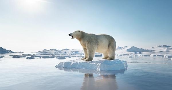 Dünya yeni bir buz çağına sürükleniyor!
