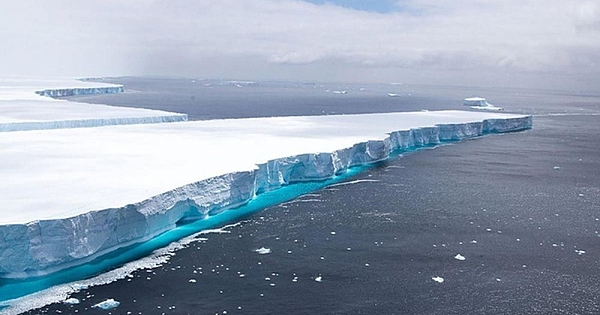 Dev buz kütlesi buz sahanlığından koptu