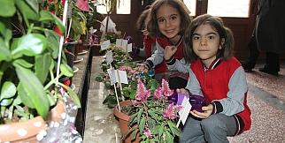 493 öğrenci okulda çiçek yetiştirdi