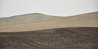 Arguvan'ı kuraklık vurdu