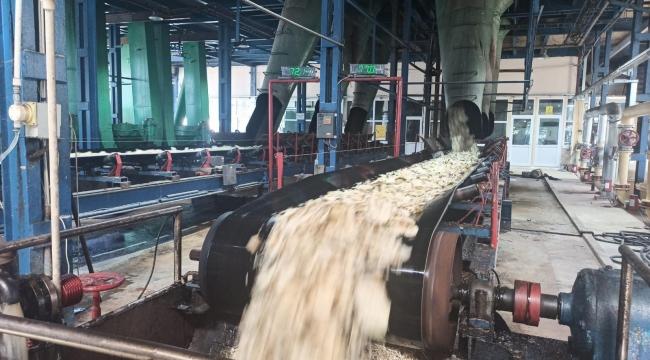 60 bin ton şeker üretimi hedefleniyor
