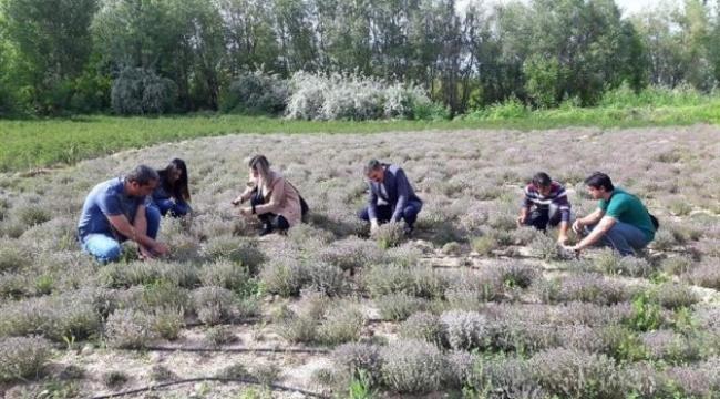 Tarımsal destekler için son başvuru 9 Ekim