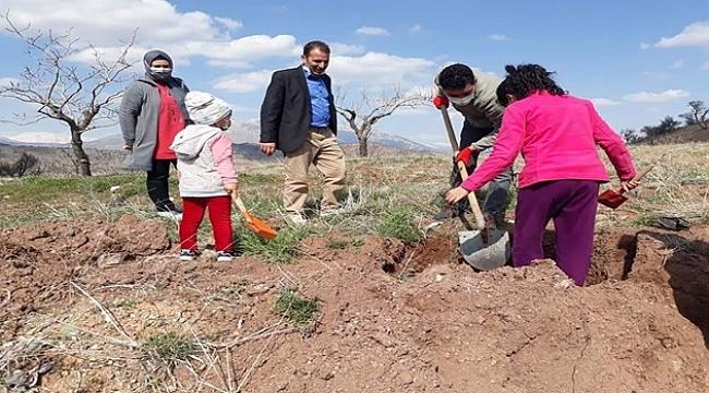 Köylüler kendi imkanlarıyla ağaç dikti
