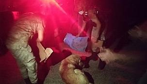 Silahla vurulan köpeğe jandarma sahip çıktı
