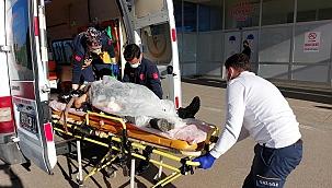 Kamyonun çarptığı kadın yaralandı