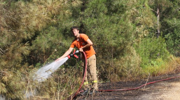 Alanya'da orman yangın korkuttu