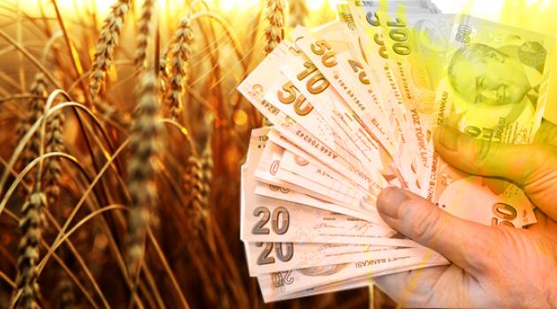 Çiftçiye 550 milyon TL'lik Ödeme Yapılacak