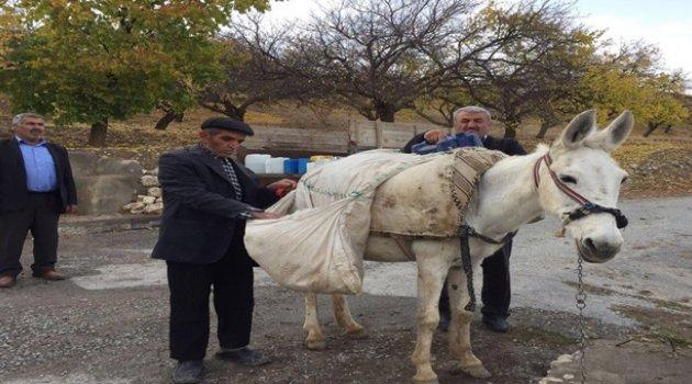 Evlerine hayvanlarla su taşıyorlar