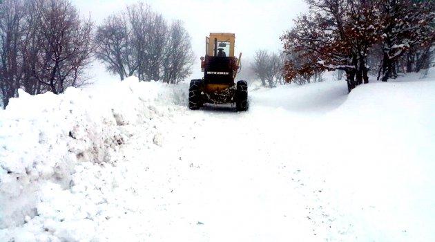 Kardan kapanan yollar açıldı