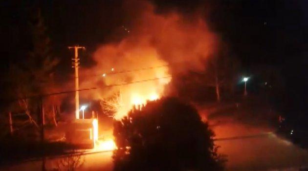 Kopan elektrik kablosu ağacı yaktı