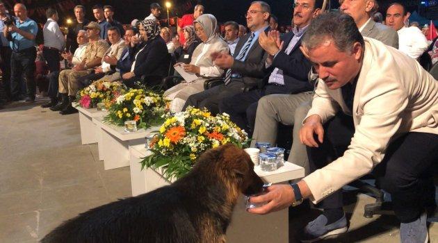 Köpeğine kendi suyunu verdi