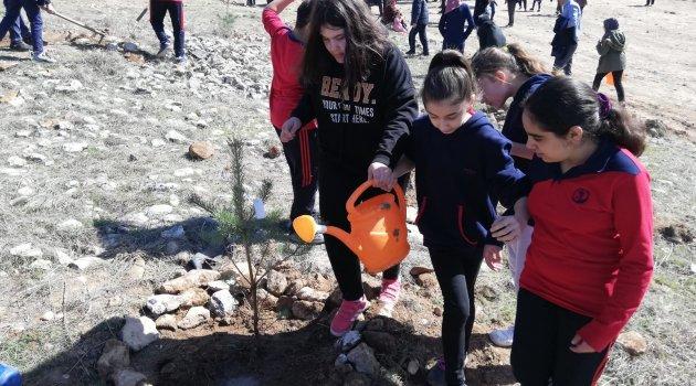 Öğrenciler şehitler için fidan dikti