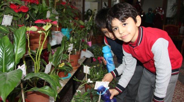 Okulda çiçek yetiştirdiler