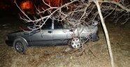 Akçadağ'da Otomobil Bahçeye Uçtu: 1 Yaralı