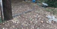 Bahçeye yıldırım düştü: 1 ölü
