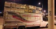 Malatya'da çalınan Arı kovanları Diyarbakır'da yakalandı