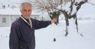 Elazığ'da Nisan ayında kar sürprizi