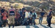 Onlarca kaçak göçmen yakalandı