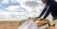 Fransızlar Akdeniz sahilindeki çöpleri topladı