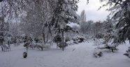 Malatya'da yılın ilk karı yağdı