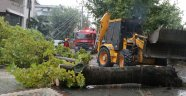 Sakarya'yı etkisi altına alan yağmur hayatı olumsuz etkiledi