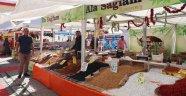 Türkiye'nin dört bir yanını gezip yöresel lezzetleri tanıtıyorlar