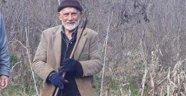 Yaşlı adam fındık bahçesinde ölü bulundu