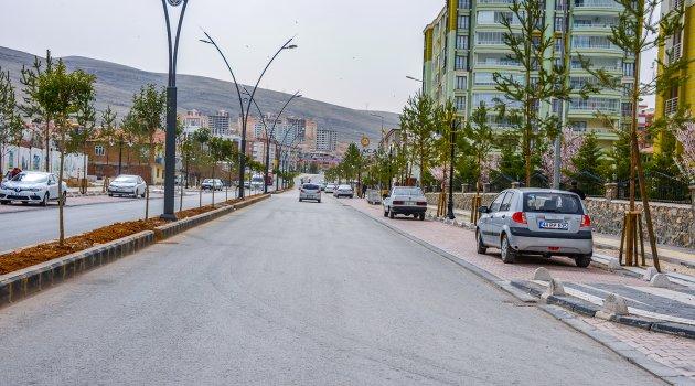 Yeşilçam Caddesinde sona doğru