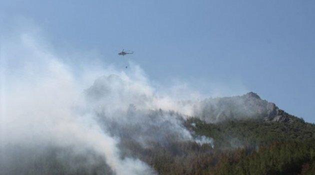 Yıldırım düştü 3 hektarlık orman yandı